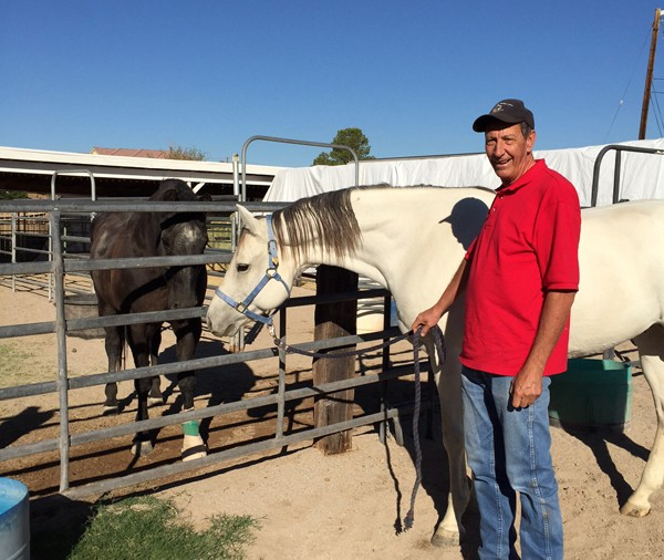 In October, Earl was adopted as a companion for an older mare