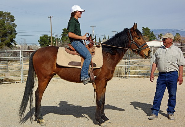 Whiskey grew up FAST and is a smart, affectionate horse