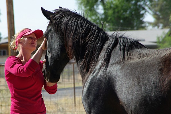 Concho was assessed by a local trainer, Robin Bailey, who saw how special he could be