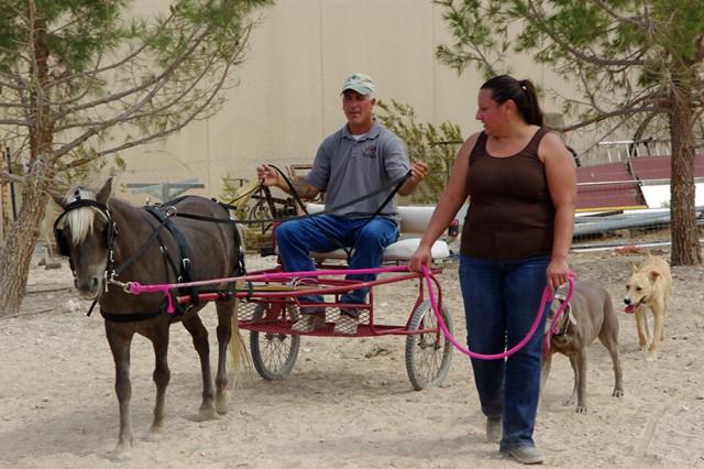 Ledger enjoyed learning new things including cart training
