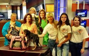 Gwen Tucker - Event Director at L.E.A.N. joins these wonderful ladies from other rescues on Ch. 13 morning news with Victoria Spilabotte to promote the Hop To Adopt event at Horseman's Park!