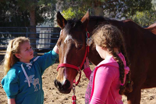 One little girl said goodbye (foster) and another took the reins to her new horse