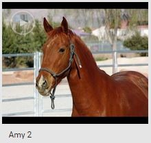 Amy 2 thumb
