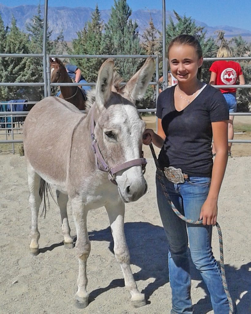 In Sept 2016, Bennie found his new home with Alani and Sandra in Bishop, CA. We wish them all the best!